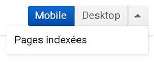 Pages indexées du domaine